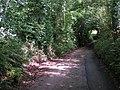 Country lane - geograph.org.uk - 989444.jpg