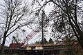 Crane, Washington SR 520 construction, Foster Island.jpg