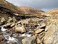 Crowden Great Brook - geograph.org.uk - 732770.jpg