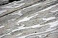 Crusts of glacial polish (Polly Dome, Yosemite National Park, California, USA) 5.jpg
