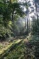 Dülmen, Naturschutzgebiet -Am Enteborn- -- 2014 -- 0205.jpg