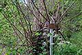 DEU-BaWü LSG-4.35.029 1 Im-Hasenbühl-07 Naturlehrpfad.jpg