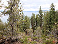 DSC02817, South Lake Tahoe, Nevada, USA (8372724401).jpg