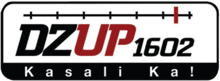 DZUP 1602.png