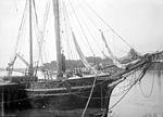Dans le port de Bayonne, octobre 1897 (2904931386).jpg