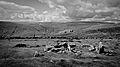 Dartmoor - Grimspound (6238335779).jpg