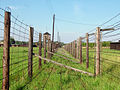 Day 4- The infinite fence of Majdanek (45079108).jpg