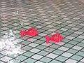 De rode schoentjes Efteling.jpg
