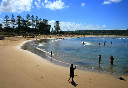 How to get to Dee Why with public transport- About the place