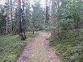 Degučių sen., Lithuania - panoramio (159).jpg