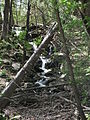 Delaware Water Gap National Recreation Area - Pennsylvania (5677817927).jpg