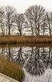 Delleboersterheide – Catspoele Natuurgebied van It Fryske Gea. Locatie, Catspoele 07.jpg