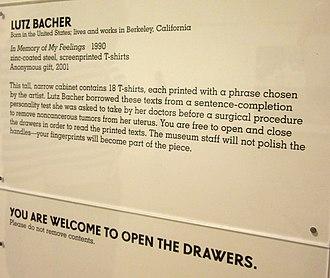 Lutz Bacher - Description of Lutz Bacher's In Memory of My Feelings, 1990