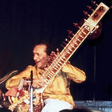A  man plays the sitar