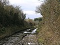Disused railway near Portesham - geograph.org.uk - 123895.jpg
