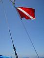 Diver Down Flag.jpg