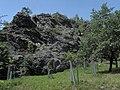Divoká Šárka - panoramio (8).jpg