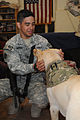 Dog and owner help relieve battle stress for deployed soldiers DVIDS479223.jpg