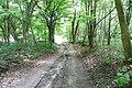 Dolny Sopot, Sopot, Poland - panoramio (68).jpg