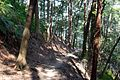 Downhill to Nanzenji (3530095820).jpg