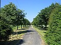 Driveway to Hardwick Farm - geograph.org.uk - 185590.jpg