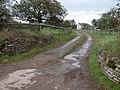 Driveway to house near Lower Wern-ddu - geograph.org.uk - 276926.jpg