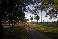 Dubbo NSW 2830, Australia - panoramio (37).jpg
