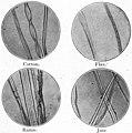 EB1911 - Fibres - Fig. 9.jpg