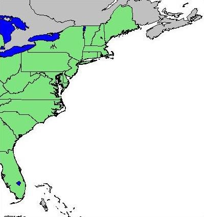 Map of the East Coast of the United States