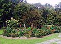 El Jardín Botánico José Celestino Mutis.jpg