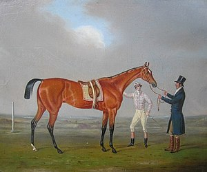 Eleanor (horse) - Eleanor, c. 1801, in a painting by Richard Denew