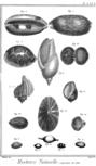 Encyclopedie volume 5-121.png