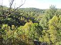Engadine NSW 2233, Australia - panoramio (175).jpg