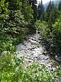 Environs du lac de st guerin - panoramio (1).jpg