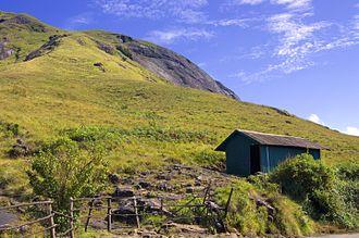 Eravikulam National Park - Trekking route in Eravikulam National Park