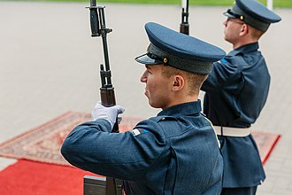 Estonian Defence Forces - An Estonian soldier presenting arms.