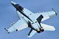 F-A-18F Super Hornet - RIAT 2014 (14659160722).jpg