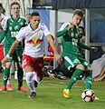 FC Liefering gegen WSG Wattens (4. November 2016) 16.jpg