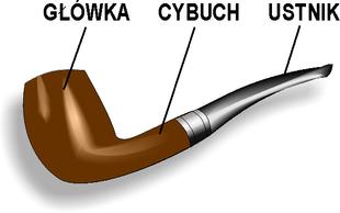 http://upload.wikimedia.org/wikipedia/commons/thumb/9/90/Fajka_budowa.png/310px-Fajka_budowa.png