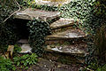 Feeringbury Manor garden steps, Feering Essex England - low sun.jpg