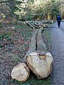 Felled timber - geograph.org.uk - 668075.jpg