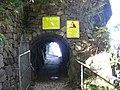 Felsenweg zum Hammetschwand-Lift - panoramio.jpg