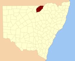 Finch NSW