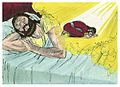 First Book of Kings Chapter 3-2 (Bible Illustrations by Sweet Media).jpg