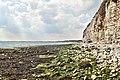 Flamborough, South Bay, UK, 08082015, jcw1967, ope (4) (33416564702).jpg