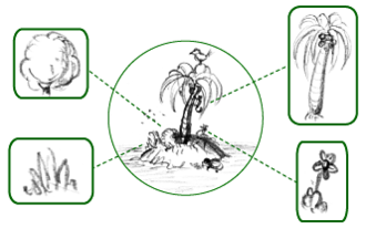 Flora - Simplified schematic of an island's flora – all its plant species, highlighted in boxes