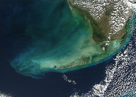 The Florida Keys as seen from a satellite - many of the Keys are made of limestone. Floridakeys-nasa.jpg