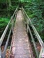 Footbridge, Dallington Forest - geograph.org.uk - 505857.jpg