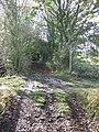 Footpath Junction - geograph.org.uk - 1578662.jpg