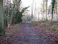 Footpath and track known as Boundary Road - geograph.org.uk - 1619596.jpg